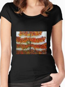 Colours of Autumn - Tamed Women's Fitted Scoop T-Shirt