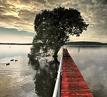 Red Jetty by Annette Blattman