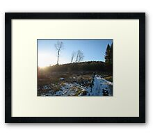 afternoon in the forest of dean Framed Print