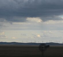 Windmill Wind Farm From a Window by Creativecap