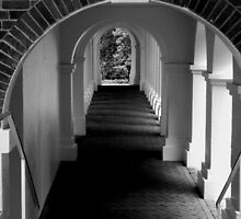 The Secret Passageway  - B&W    ^ by ctheworld