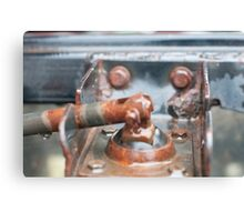 Rusty and nice Canvas Print