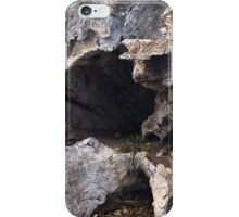 Tree Garden iPhone Case/Skin