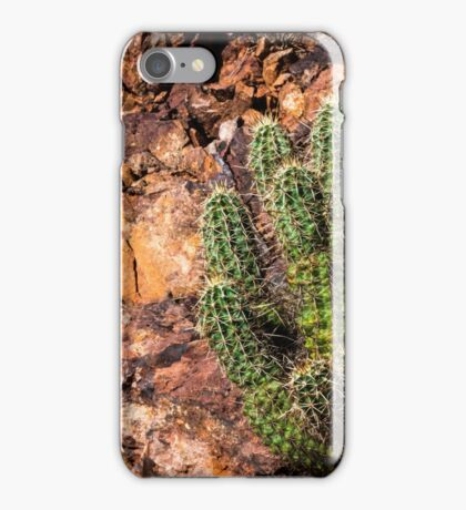 Rocky Situation iPhone Case/Skin