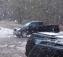 Are Black Vehicles a Requirement for Driving in Snow? by Charldia