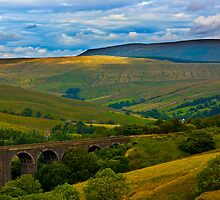 Above the Viaduct - Dentdale by Trevor Kersley