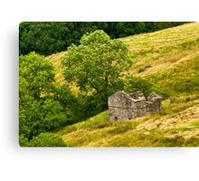 Dentdale Barn Canvas Print