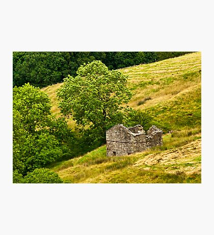Dentdale Barn Photographic Print