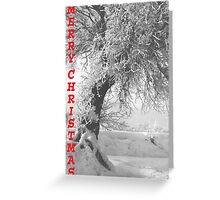Winter Landscape - Merry Christmas Greeting Card