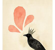 King Crow Photographic Print