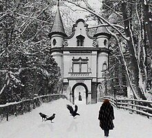 The enchanted walk. by Chris Bird
