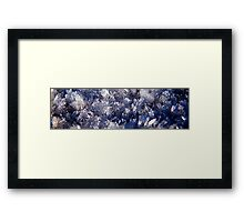 The Ice Crystals 2 Framed Print