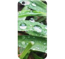 Raindrops on Blades of Grass iPhone Case/Skin