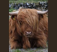 Super Scottish Highland Cow T-Shirt
