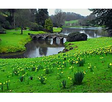 Gently Meandering Photographic Print