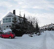 Winter panorama 2011 by SvobodaT