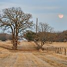 Hill County Moon by Susan Russell
