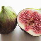 Fig by Sue Brown