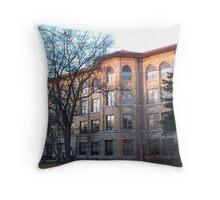 Oak Park River Forest High School Throw Pillow