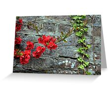 quince and ivy Greeting Card