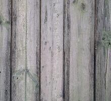 Fragment of old wooden fence by vladromensky