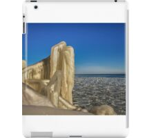 Nature's Sculpture iPad Case/Skin