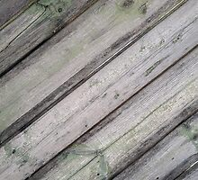 Detail of an old  gray wooden fence by vladromensky