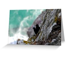 Two small birds Greeting Card