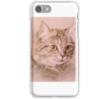 Whimsey iPhone Case/Skin