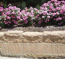 Summer in Scoville Park by tpatrick60