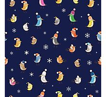 Pattern with birdies. Photographic Print