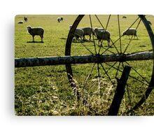 Sprinklers - Sheep Canvas Print
