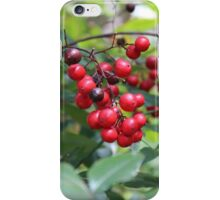 Berry blast iPhone Case/Skin