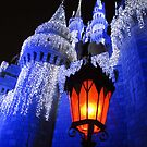 magic kingdom by Leeanne Middleton