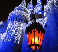 magic kingdom by Leeanne Middleton