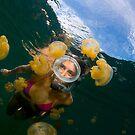 Jellyfish lake by Carlos Villoch