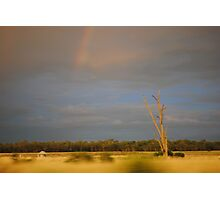 Rainbow Central New South Wales Photographic Print
