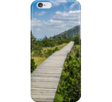 Mountain Tundra iPhone Case/Skin