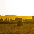Hay bales @ dawn by Ali Brown