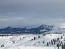 The Buttes in Winter by Betty  Town Duncan