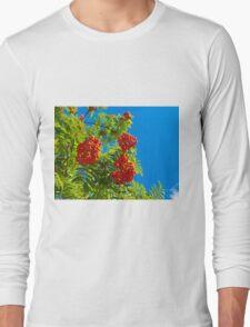 Rowan tree  with red berries Long Sleeve T-Shirt