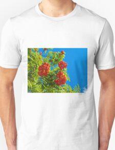 Rowan tree  with red berries Unisex T-Shirt