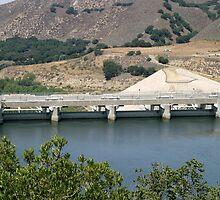 Bradbruy Dam by Henrik Lehnerer