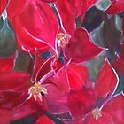 New Years Pointsettias by Robin Borland
