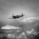 Lone Patrol by larry flewers