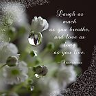 Laugh as much as you breathe~ Macro Waterdrop Original Wall Art by bfphotoart