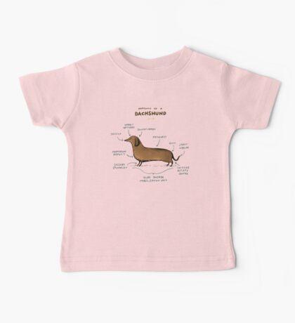 Anatomy of a Dachshund Baby Tee