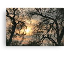 A Winter Glow Canvas Print