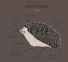 Anatomy of a Hedgehog One Piece - Short Sleeve