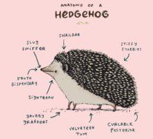 Anatomy of a Hedgehog Baby Tee